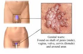 día bisexual oral sin condón